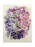 African Violets Giclee Print by Joan Thewsey