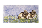 Cat Mint Giclee Print by Suzi Kennett