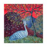Peacock with Locusts, 1989 Reproduction procédé giclée par Tamas Galambos