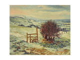 Sussex Stile, Winter, 1996 Giclee Print by Robert Tyndall