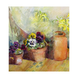 Pansies and Terracotta Pots Giclee Print by Karen Armitage