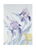 Iris, Blue Mare Giclee Print by Karen Armitage