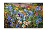 The Iris Bed, 1993 Giclee Print by Timothy Easton