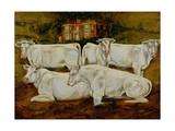 Charolais Bulls, Dippenhall, Farnham Giclee Print by Gareth Lloyd Ball