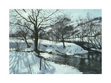 Winter River, 1996 Giclee Print by John Cooke