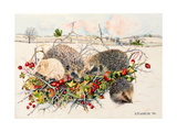 Hedgehogs in Hedgerow Basket, 1996 Giclee Print by E.B. Watts