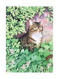 Jackie's Cat (Garden Design) Giclee Print by Suzanne Bailey