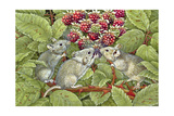 Blackberrying, 1996 Giclee Print by  Ditz