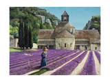 Lavender Picker, Abbaye Senanque, Provence Giclee Print by Trevor Neal