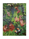 Orangutangs and Toucans, 1998 Giclee Print by Odile Kidd