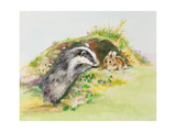 Badger and a Rabbit Giclee Print by Diane Matthes