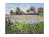 Farmstead and Iris Field, 1992 Lámina giclée por Timothy Easton