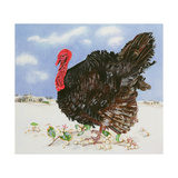 Black Turkey with Snow Berries, 1996 Giclee Print by E.B. Watts