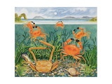 Crabs in the Ocean, 1997 Giclee Print by E.B. Watts
