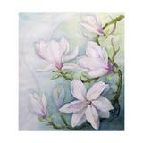 Magnolias Giclee Print by Karen Armitage