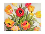 Orange and Red Tulips Giclee Print by Christopher Ryland