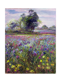 Irises and Distant May Tree, 1993 Giclee Print by Timothy Easton