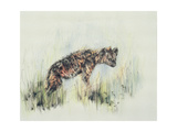 Baby Hyena, 1995 Giclee Print by Odile Kidd