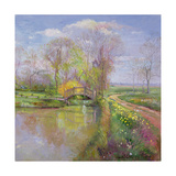 Spring Bridge, 1992 Giclee Print by Timothy Easton