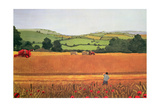 Harvesting in the Cotswolds Giclee Print by Maggie Rowe