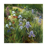 Irises and Oxeye Daisies, 1997 Giclee Print by Timothy Easton
