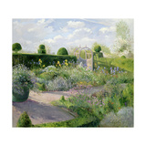 Irises in the Herb Garden, 1995 Giclee Print by Timothy Easton