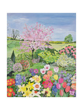 Spring from the Four Seasons (One of a Set of Four) Giclee Print by Hilary Jones