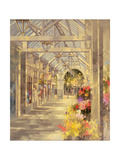 Arcade, Southport Giclee Print by Peter Miller