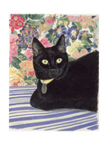 Black Cat Giclee Print by Anne Robinson