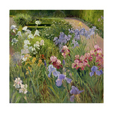 Irises at Bedfield Giclee Print by Timothy Easton