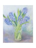 Hyacinths Giclee Print by Sophia Elliot