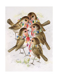 Christmas Robins Giclee Print by Stanley Cooke