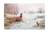 Pheasant and Bramblefinch in the Snow Giclee Print by Carl Donner