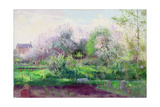 Allotment Stalker, 1991 Giclee Print by Timothy Easton