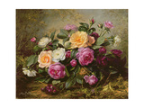 Full Blown Roses Giclee Print by Albert Williams