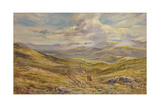 Cairngorms from Kinrara, 1988 Giclee Print by Tim Scott Bolton