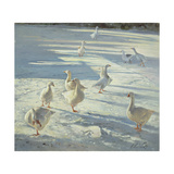 The Gathering Giclee Print by Timothy Easton