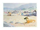 Dog on the Beach, Woolacombe, 1987 Giclee Print by Lucy Willis