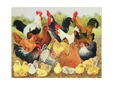 Something to Crow About Giclée-tryk af Pat Scott