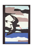 Oystercatcher Giclee Print by John Wallington