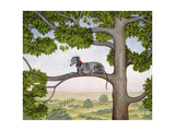 The Tree Whippet Giclee Print by  Ditz