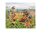 Furrowed Crab with Starfish Underwater, 1997 Giclee Print by E.B. Watts