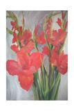 Red Gladioli Giclee Print by Margaret Norris