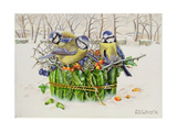 Blue Tits in Leaf Nest, 1996 Giclee Print by E.B. Watts