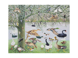The Odd Duck Giclee Print by Pat Scott