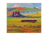 Evening Cattle, Cuckmere Valley, Sussex Giclee Print by Robert Tyndall