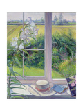 Window Seat and Lily, 1991 Giclee Print by Timothy Easton