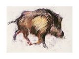 Wild Boar Trotting, 1999 Giclee Print by Mark Adlington