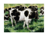Friesian Cows Giclee Print by Gareth Lloyd Ball