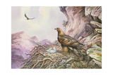 Golden Eagles at their Eyrie Giclee Print by Carl Donner